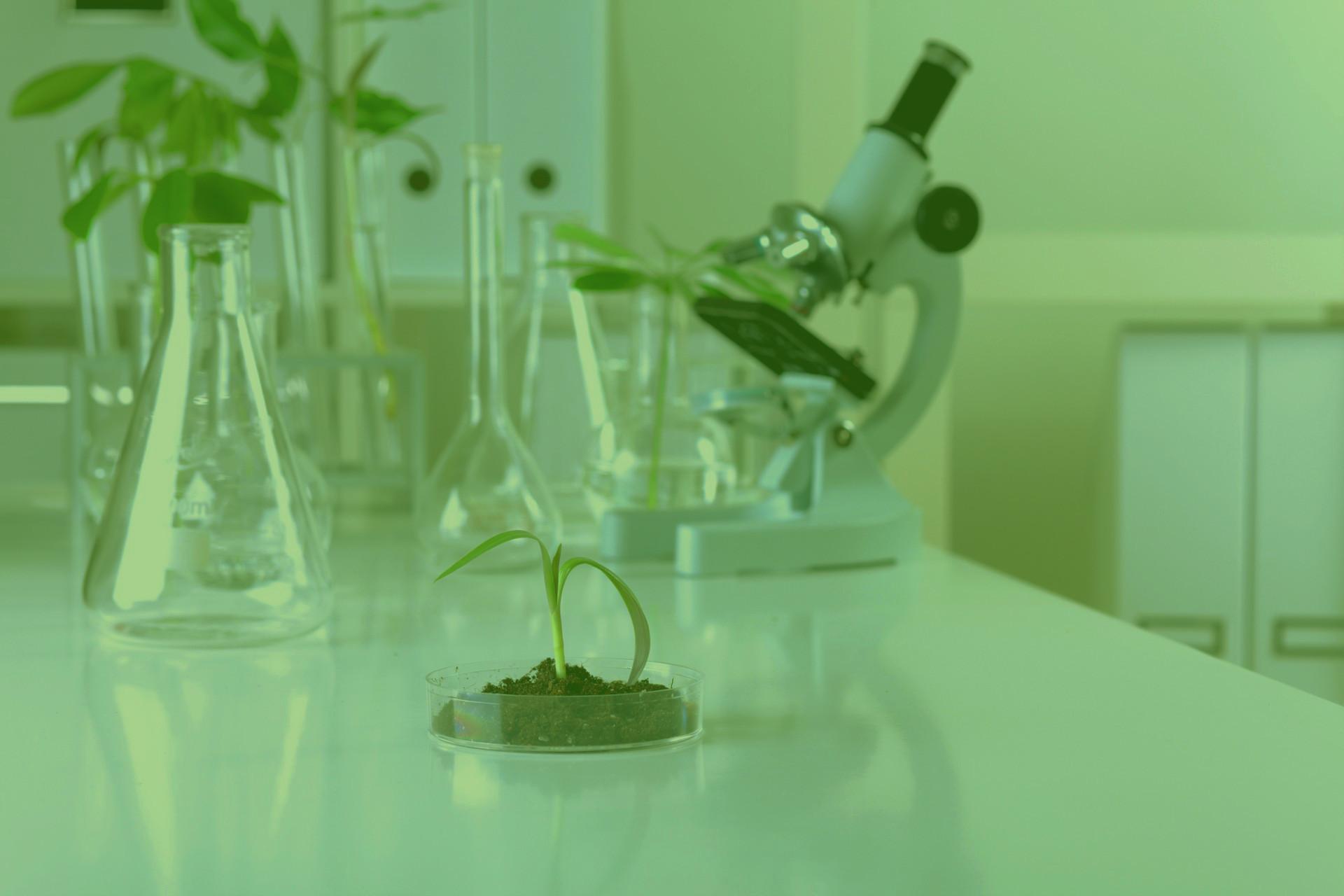 immagine-laboratorio